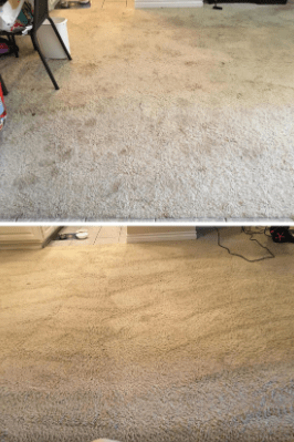 Performance of Bissell Proheat 2X 1548 on white carpet
