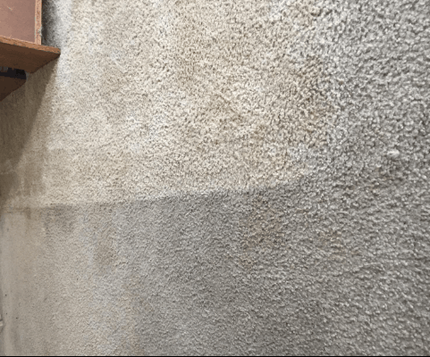 Bissell 17n4 cleaning results - 2019