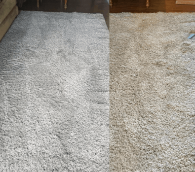 hoover spotless fh11300pc performs on carpet