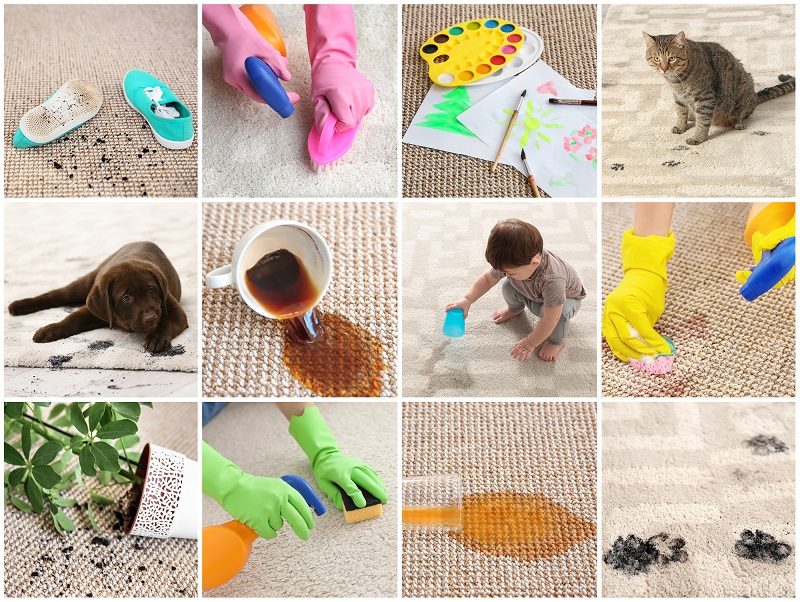 benefits of a spot cleaner carpet cleaning machine - collage of different kinds of messes and spills on carpet