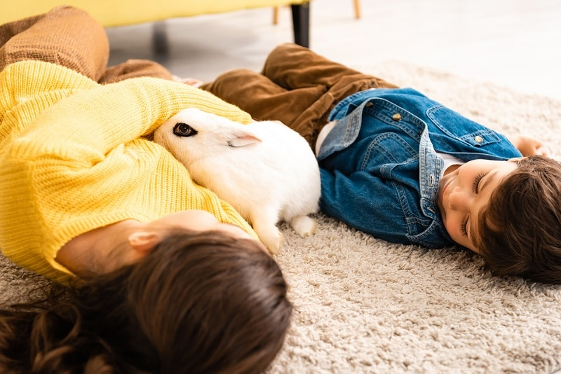 children laying on clean thick pile shag carpet with soft pet bunny